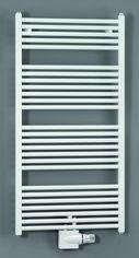 Zehnder Badkamer radiatoren